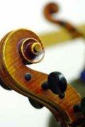 resized__120x179_Violine